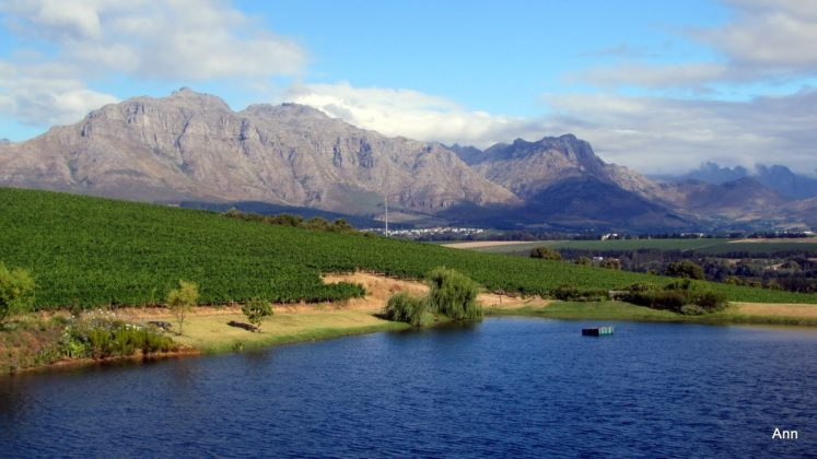 Stellenbosch South Africa  City new picture : South Africa Travel – South African Winelands – Stellenbosch